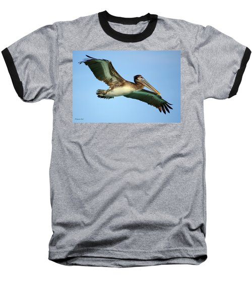 Baseball T-Shirt featuring the photograph Soaring Pelican by Suzanne Stout