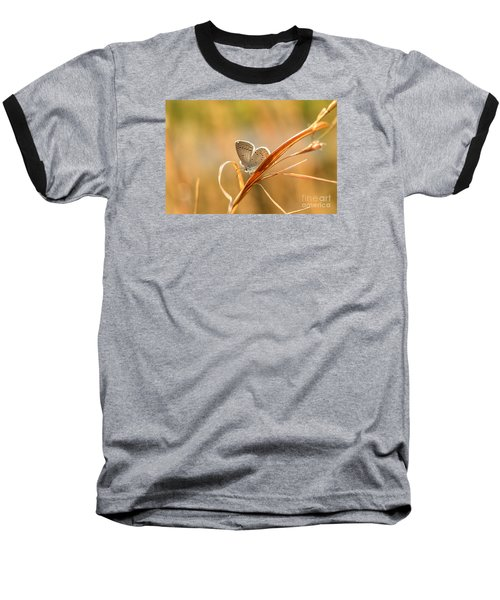 Soft Baby Blue Baseball T-Shirt