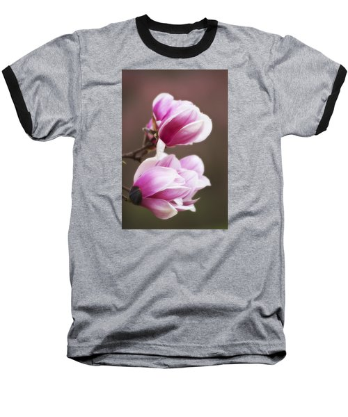 Soft Magnolia Blossoms Baseball T-Shirt by Shelly Gunderson