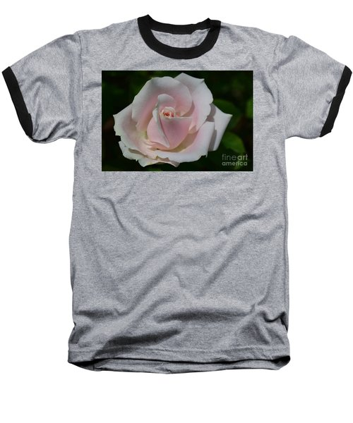 Baseball T-Shirt featuring the photograph Soft Pink Rose by Jeannie Rhode