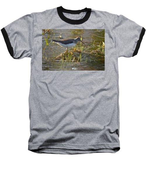 Solitary Sandpiper 2 Baseball T-Shirt