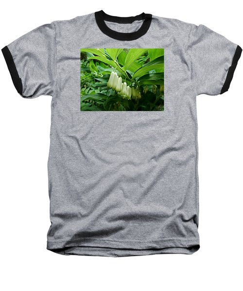 Wild Solomon's Seal Baseball T-Shirt by William Tanneberger