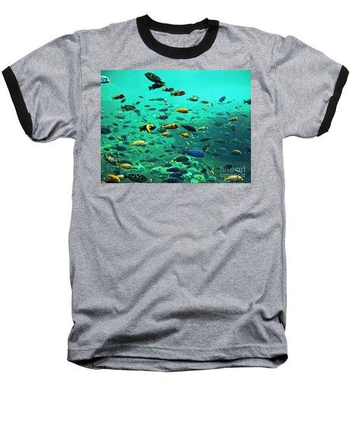 Something Fishy Baseball T-Shirt
