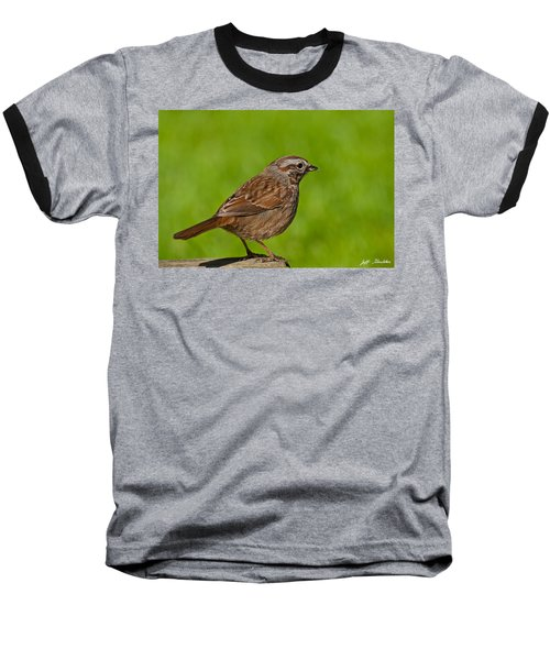 Song Sparrow On A Log Baseball T-Shirt by Jeff Goulden