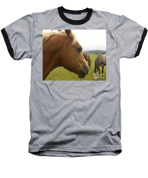 Baseball T-Shirt featuring the photograph Sorrel Horse Profile by Belinda Greb