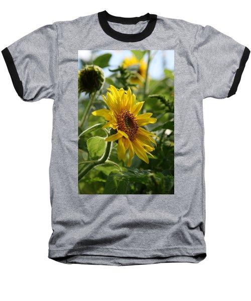Soulshine No.2 Baseball T-Shirt by Neal Eslinger