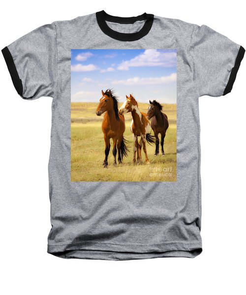 Southwest Wild Horses On Navajo Indian Reservation Baseball T-Shirt