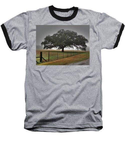 Spanish Oak I Baseball T-Shirt