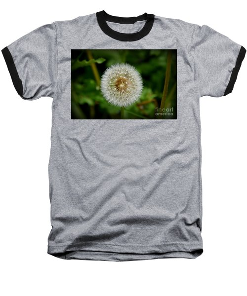 Sparkling Dandelion Baseball T-Shirt by Debra Martz