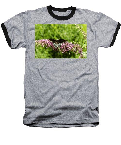 Spicebush Swallowtail Baseball T-Shirt