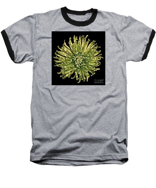 Baseball T-Shirt featuring the photograph Spider Mum by Jerry Fornarotto