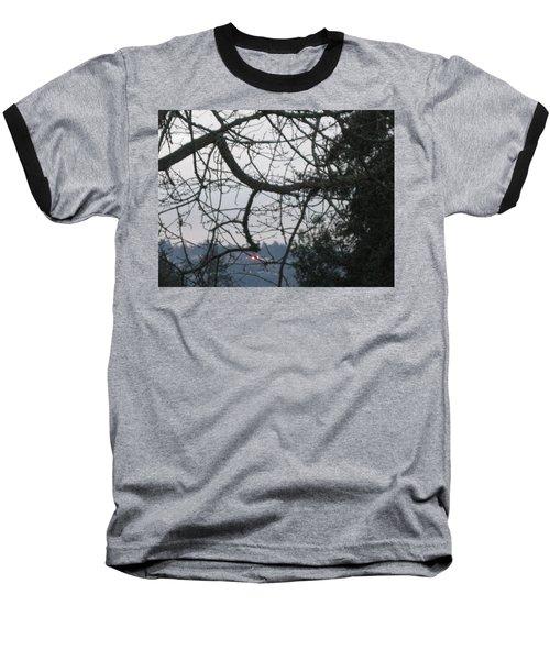 Spider Tree Baseball T-Shirt