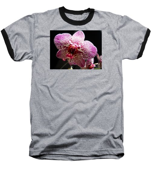 Spotted Purple Orchid Baseball T-Shirt by Ramona Matei