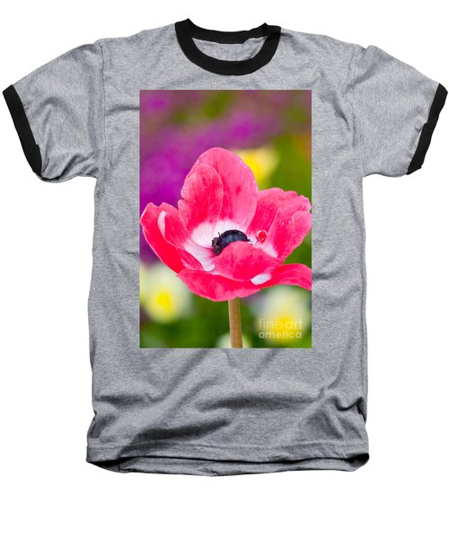 Spring Colors   Baseball T-Shirt