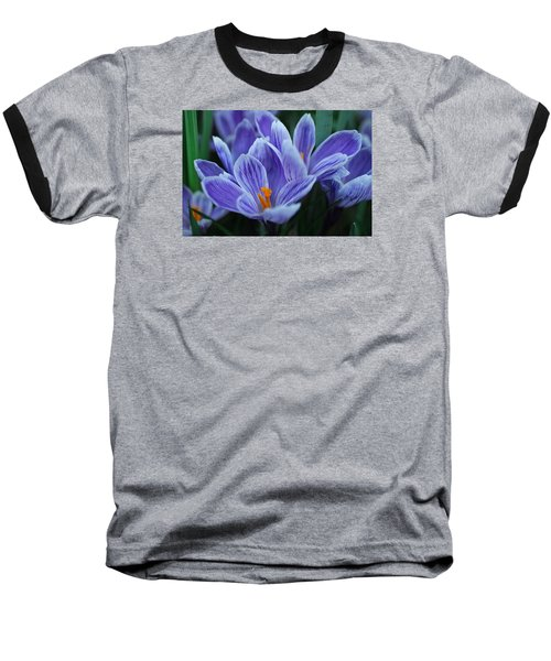Baseball T-Shirt featuring the photograph Spring Crocus by Julie Andel