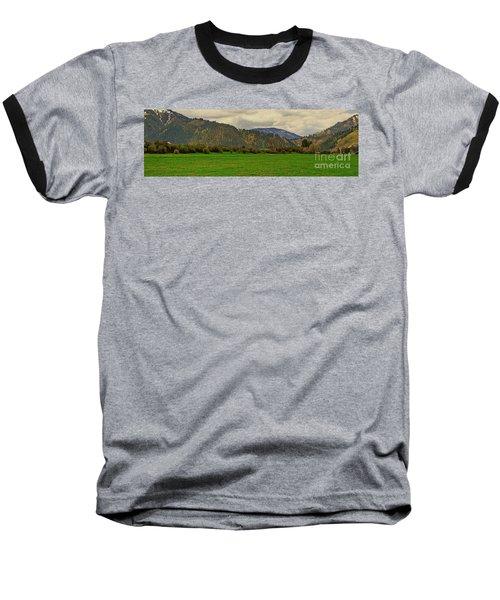 Spring Dandylions Baseball T-Shirt