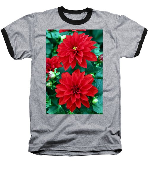 Spring Flowers 5 Baseball T-Shirt