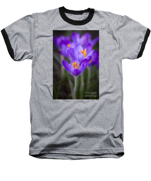 Spring Has Sprung Baseball T-Shirt by Clare Bambers