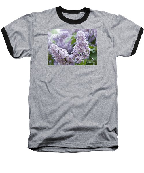 Spring Lilacs In Bloom Baseball T-Shirt by Juli Scalzi