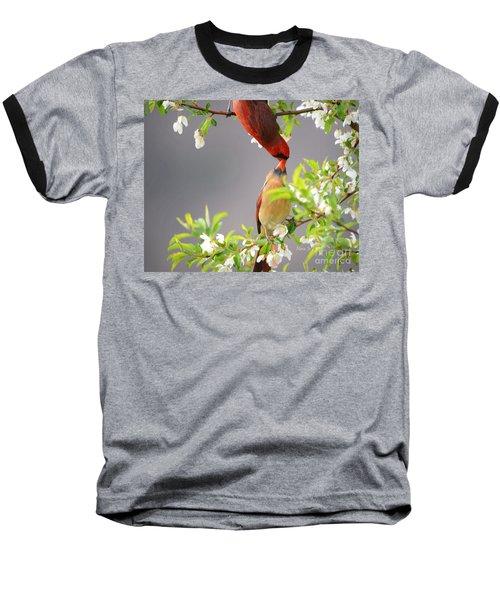 Cardinal Spring Love Baseball T-Shirt