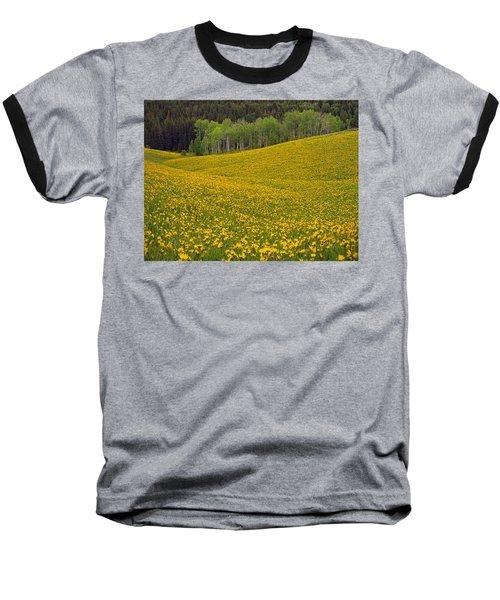 Spring Meadow Baseball T-Shirt
