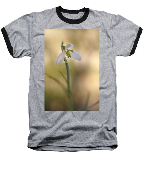 Spring Messenger Baseball T-Shirt