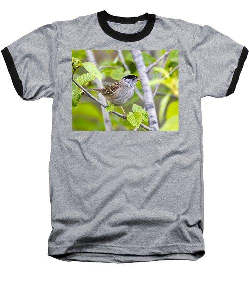 Spring Scene Baseball T-Shirt