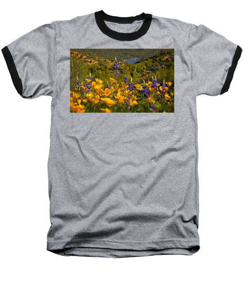 Spring Southwest Style  Baseball T-Shirt