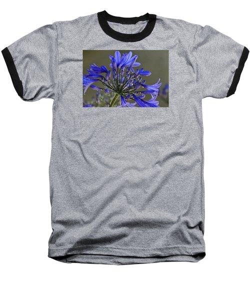 Spring Time Blues Baseball T-Shirt by Menachem Ganon
