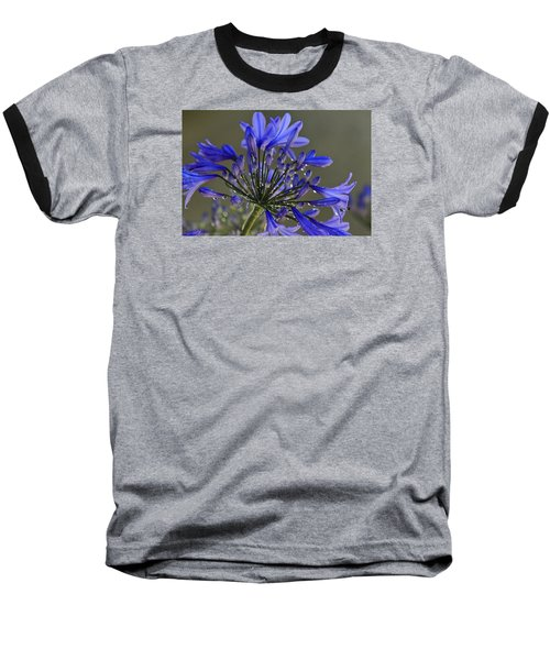 Spring Time Blues Baseball T-Shirt