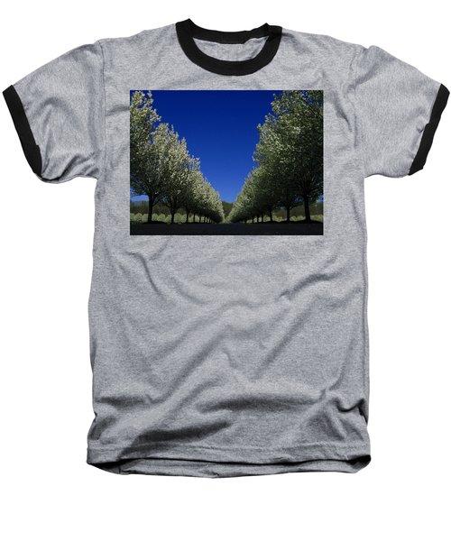 Spring Tunnel Baseball T-Shirt