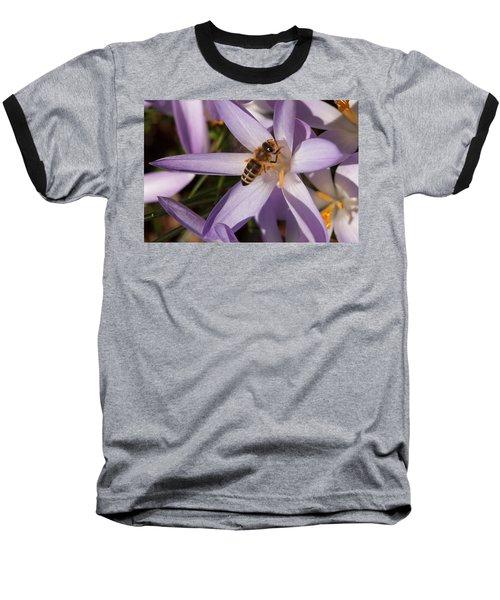 Spring's Welcome Baseball T-Shirt