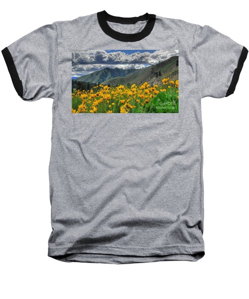 Baseball T-Shirt featuring the photograph Springtime At Gallagher by Sam Rosen