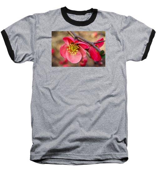 Springtime Quince Baseball T-Shirt