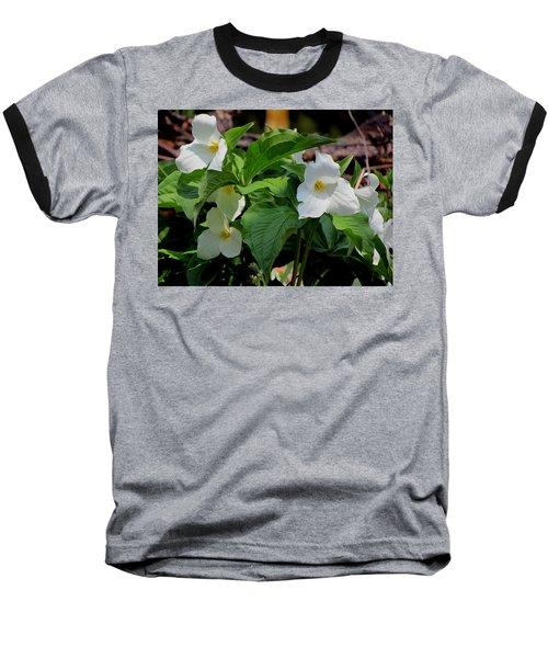 Springtime Trillium Baseball T-Shirt by David T Wilkinson