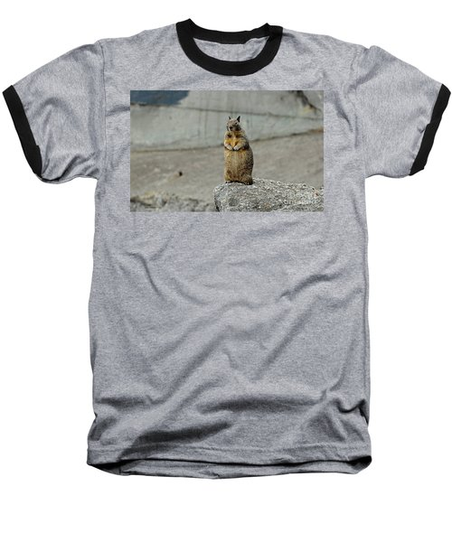 Baseball T-Shirt featuring the photograph Squirrel At Lover's Point  by Susan Wiedmann
