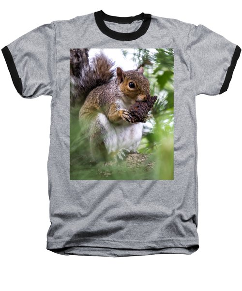 Squirrel With Pine Cone Baseball T-Shirt