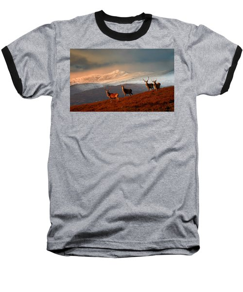 Stags At Strathglass Baseball T-Shirt