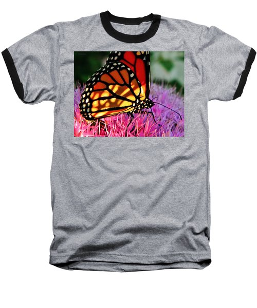 Stained Glass Monarch  Baseball T-Shirt