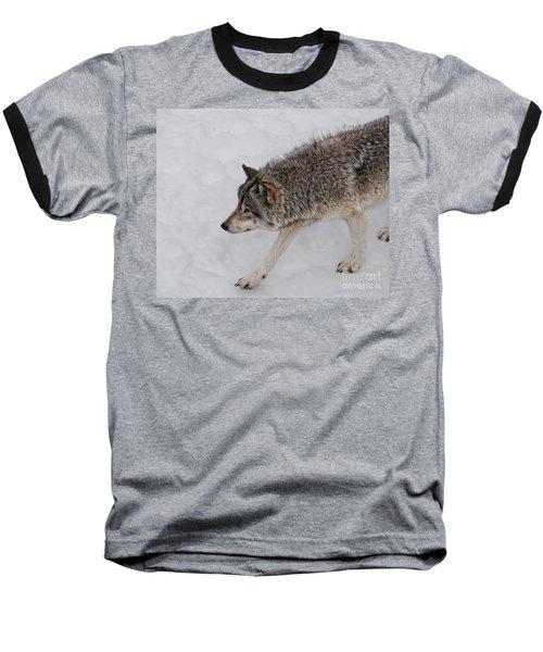 Baseball T-Shirt featuring the photograph Stalker by Bianca Nadeau