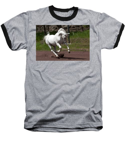 Stallion Baseball T-Shirt by Wes and Dotty Weber