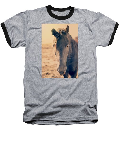 Stallion II Baseball T-Shirt