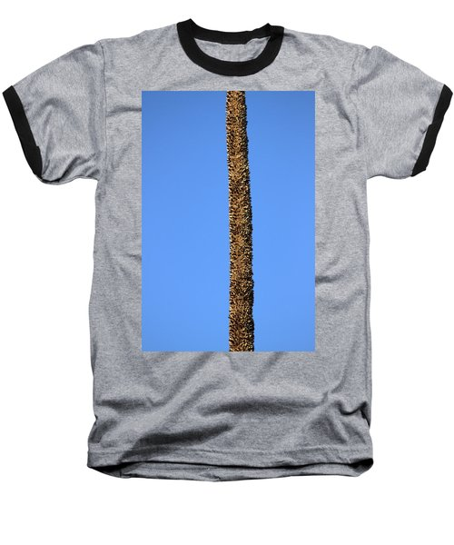 Standing Alone Baseball T-Shirt by Miroslava Jurcik