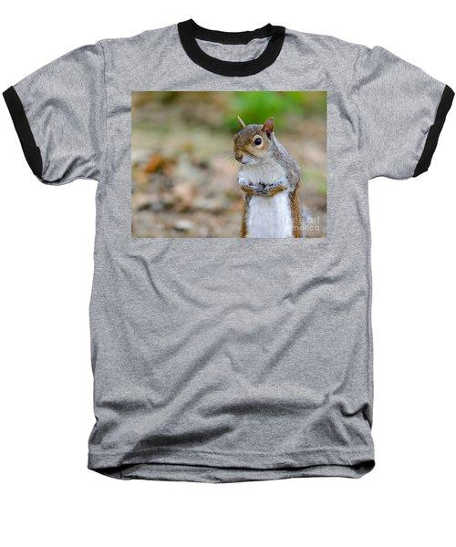 Standing Squirrel Baseball T-Shirt by Matt Malloy