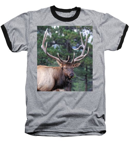 Stare Down Baseball T-Shirt
