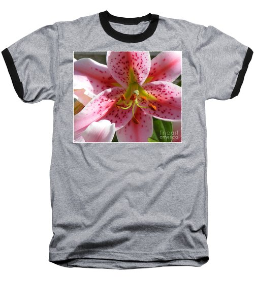 Stargazer Lily Baseball T-Shirt by Barbara Griffin