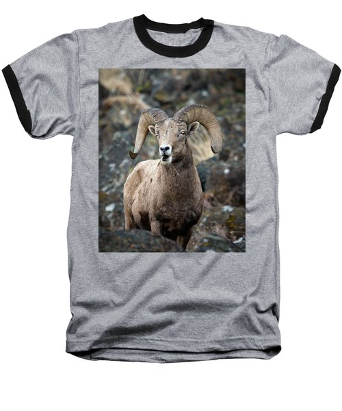 Baseball T-Shirt featuring the photograph Startled Ram by Steve McKinzie