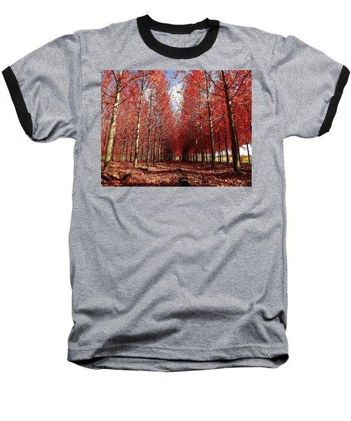 Stay Baseball T-Shirt