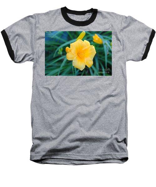 Stella De Oro Daylily Baseball T-Shirt