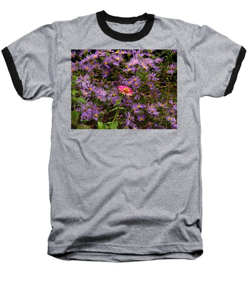 Stranger In A Strange Land Baseball T-Shirt